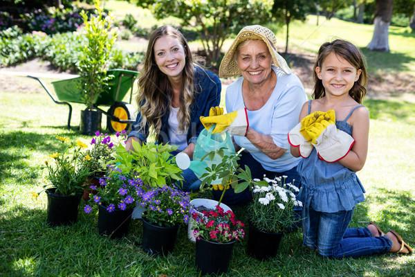 Portrait of grandmother, mother and daughter gardening together Stock photo © wavebreak_media