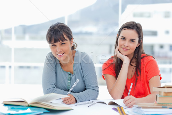 A girl and her friend smiling as they look into the camera while doing homework  Stock photo © wavebreak_media
