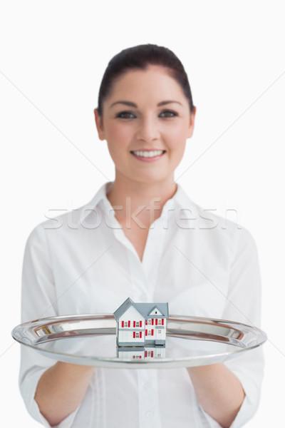 Serveerster vrouw weinig huis zilver Stockfoto © wavebreak_media