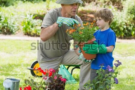 Grootvader kleinzoon verloofd tuinieren gras Stockfoto © wavebreak_media