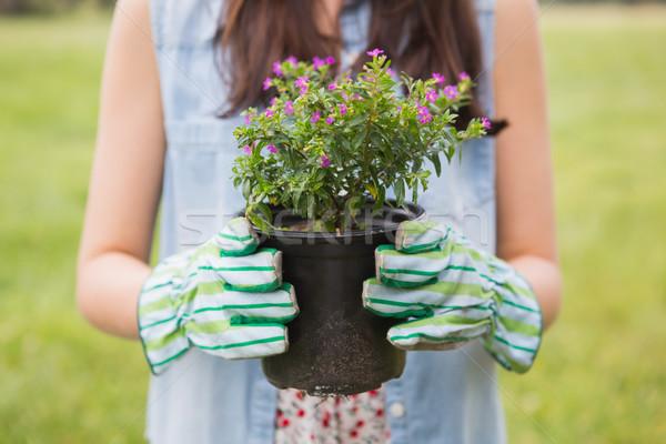 Happy woman holding potted flowers Stock photo © wavebreak_media