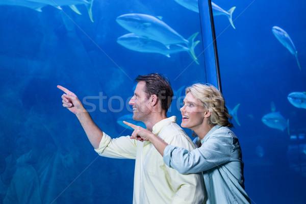 Heureux couple pointant poissons réservoir aquarium Photo stock © wavebreak_media