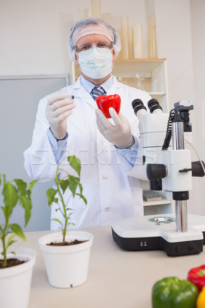 Food scientist working attentively with red pepper Stock photo © wavebreak_media