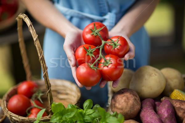 Woman holding tomatoes on palm Stock photo © wavebreak_media