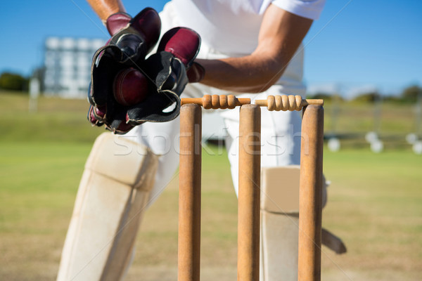 Cropped image of wicket keeper standing by stumps Stock photo © wavebreak_media