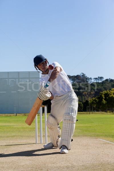 игрок играет крикет области Blue Sky небе Сток-фото © wavebreak_media