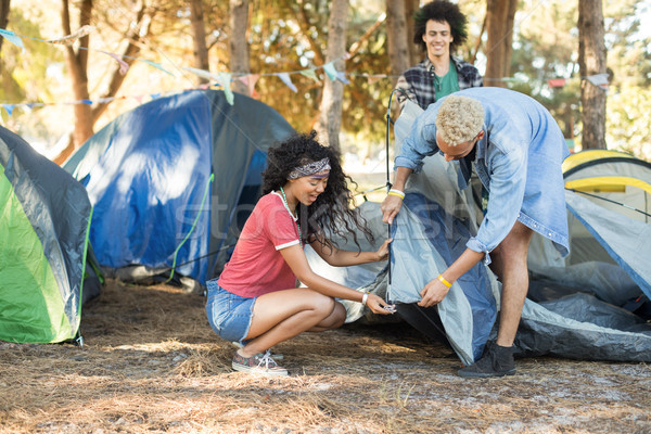 Young friends setting up tent together on field Stock photo © wavebreak_media