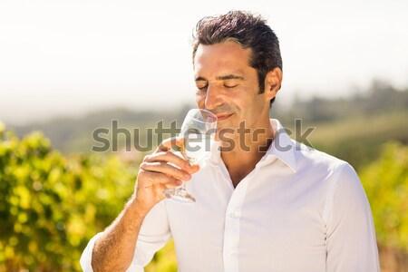 Mosolyog megvizsgál bor szőlőskert természet mező Stock fotó © wavebreak_media
