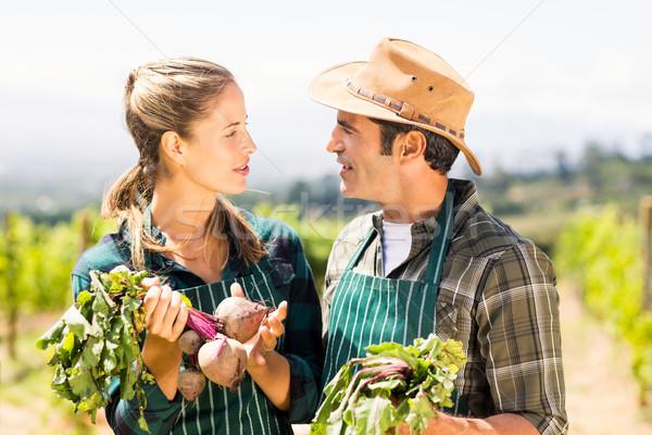 Heureux agriculteur couple légumes regarder Photo stock © wavebreak_media