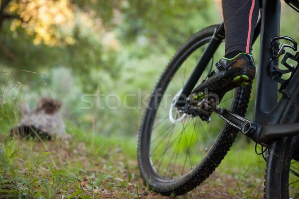 Low section of female mountain biker riding bicycle Stock photo © wavebreak_media