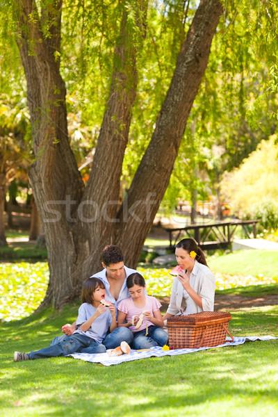 Cute family picnicking in the park Stock photo © wavebreak_media