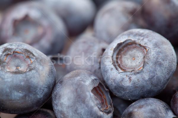 Blueberries  fruit in extreme close-up Stock photo © wavebreak_media