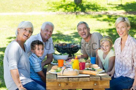 Nagycsalád áll kerti grillezés park portré család Stock fotó © wavebreak_media