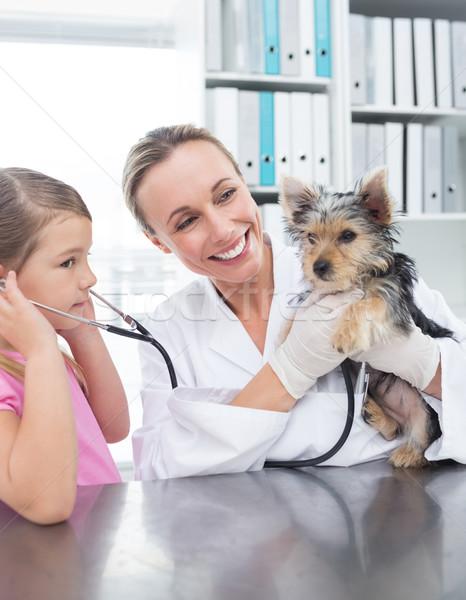 Сток-фото: ветеринар · девушки · щенков · клинике · женщины