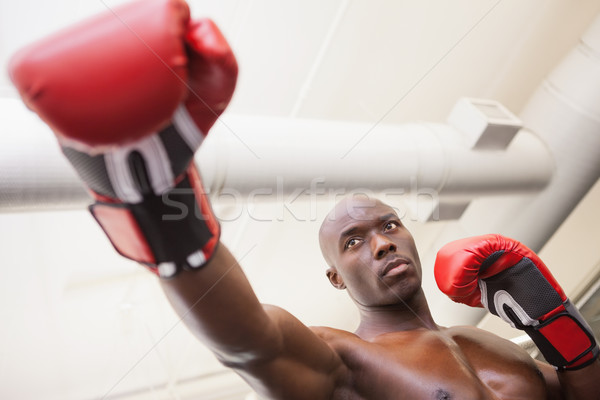 Male boxer attacking with his right in health club Stock photo © wavebreak_media