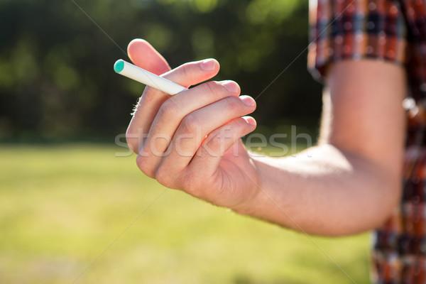 Hipszter dohányzás elektronikus cigaretta férfi természet Stock fotó © wavebreak_media