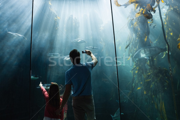 Father and daughter looking at fish tank Stock photo © wavebreak_media