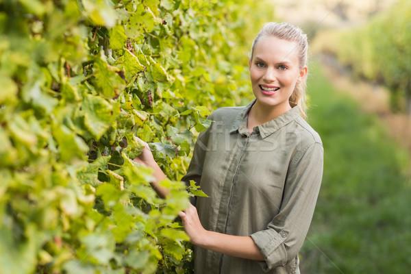 Young happy vintner smiling at camera Stock photo © wavebreak_media