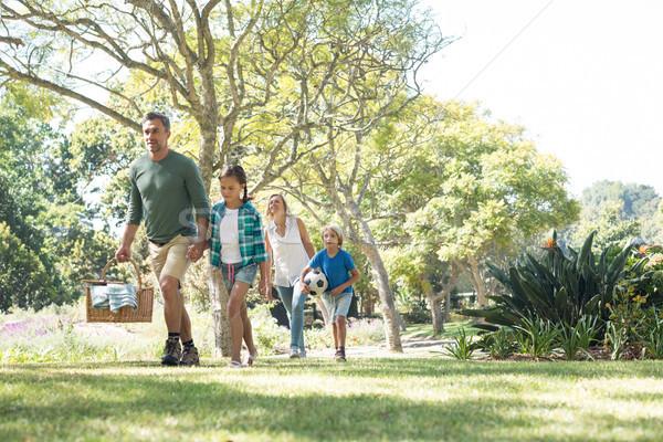 家族 公園 ピクニック ツリー ストックフォト © wavebreak_media