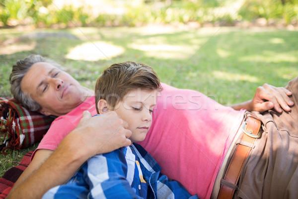 Vader zoon slapen picknickdeken park man Stockfoto © wavebreak_media