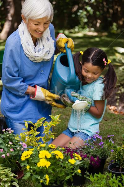 Smiling girl and grandmother watering plants Stock photo © wavebreak_media