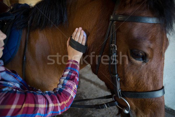 Girl grooming the horse in the ranch Stock photo © wavebreak_media