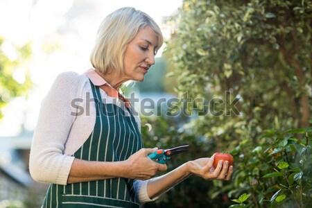 Belle femme lecture livre potable vin porche Photo stock © wavebreak_media