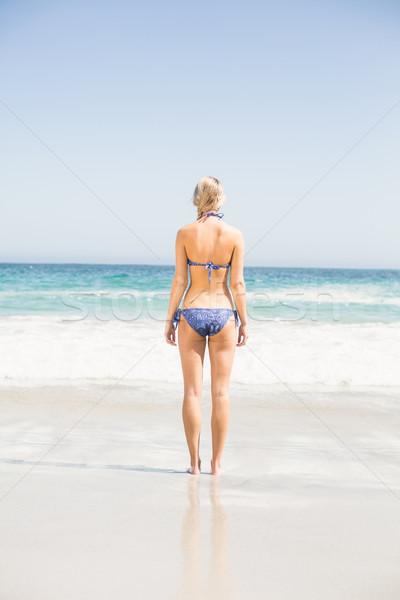 Widok z tyłu kobieta bikini stałego plaży Zdjęcia stock © wavebreak_media