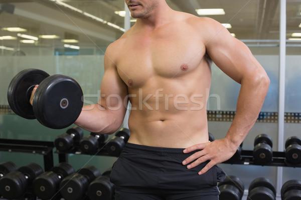 Póló nélkül testépítő emel nehéz fekete súlyzó Stock fotó © wavebreak_media