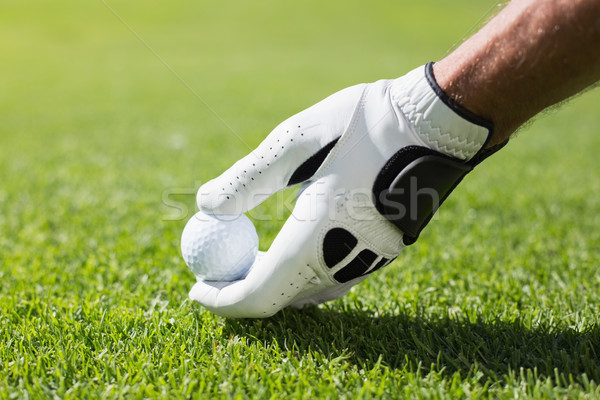 гольфист мяч для гольфа гольф спорт зеленый Сток-фото © wavebreak_media