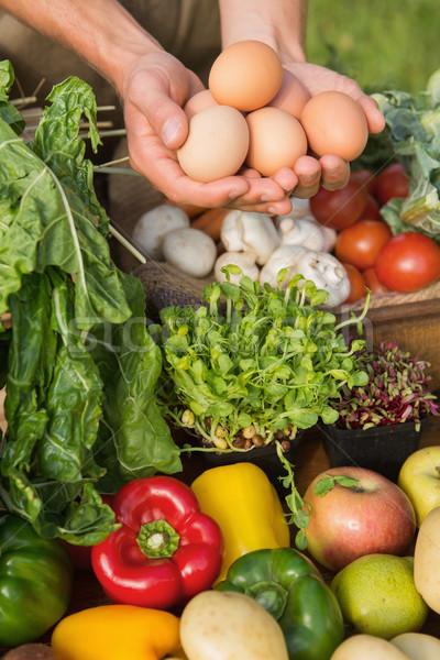 Landbouwer tonen organisch eieren gras Stockfoto © wavebreak_media