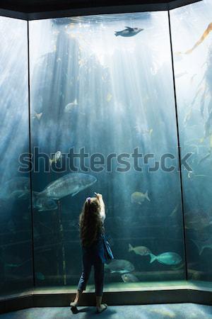Genç bakıyor tank akvaryum balık çocuk Stok fotoğraf © wavebreak_media
