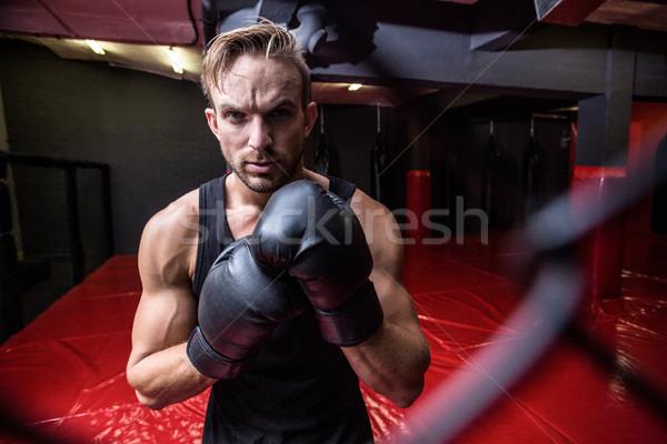 Uważny boks człowiek patrząc kamery portret Zdjęcia stock © wavebreak_media