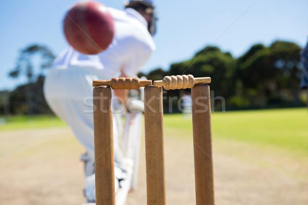 Close up of ball by stump against batsman Stock photo © wavebreak_media