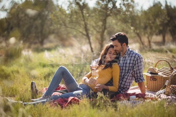 расслабляющая пикник одеяло оливкового Сток-фото © wavebreak_media