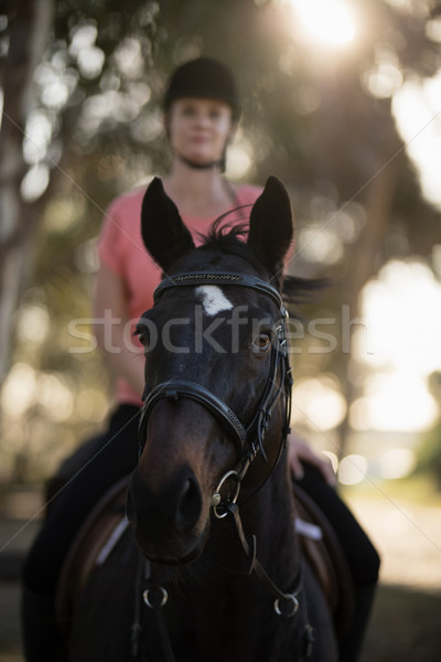 ストックフォト: 女性 · ジョッキー · ライディング · 馬 · 納屋 · 女性
