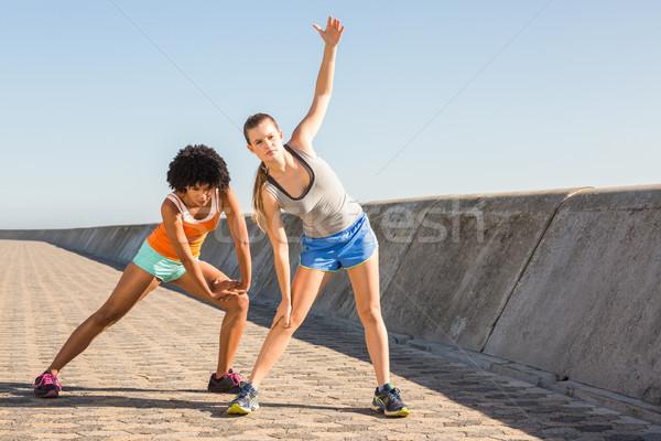 Iki genç kadın birlikte mesire kadın Stok fotoğraf © wavebreak_media