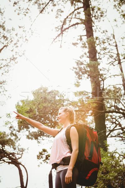 Smiling blonde hiker pointing far away Stock photo © wavebreak_media