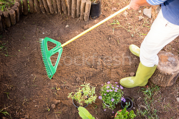 Low section of gardener using rake at farm Stock photo © wavebreak_media