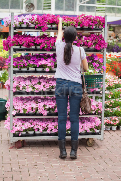 Femme fleur haut tablettes fleurs Photo stock © wavebreak_media