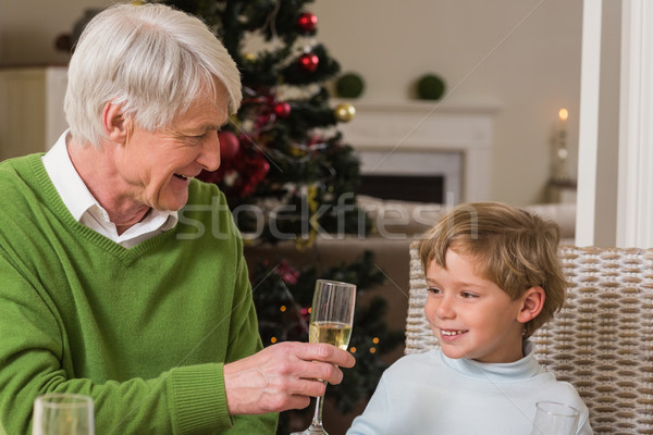 Grandfather showing glass of champagne to his grandson Stock photo © wavebreak_media