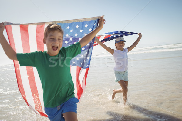 Mutlu kardeşler amerikan bayraklar çalışma Stok fotoğraf © wavebreak_media