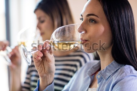 Woman interacting while having wine during lunch Stock photo © wavebreak_media
