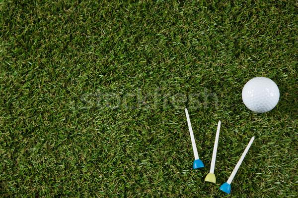 мяч для гольфа травянистый области трава зеленый Сток-фото © wavebreak_media