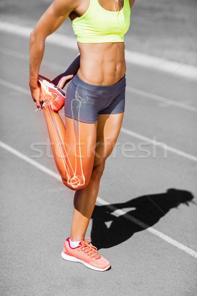 Niski sekcja kobiet sportowiec nogi Zdjęcia stock © wavebreak_media