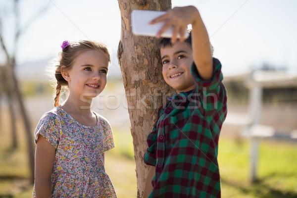 Boldog testvérek elvesz mobiltelefon park fa Stock fotó © wavebreak_media