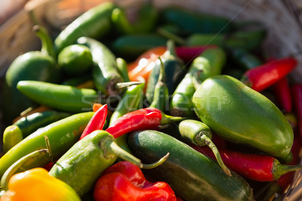 Various fresh vegetables in wicker basket Stock photo © wavebreak_media