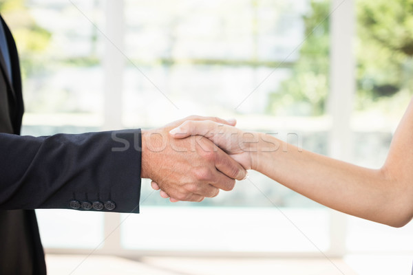 Real-estate agent shaking hands with client Stock photo © wavebreak_media