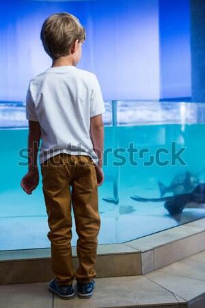 Rückansicht Mann Handschellen stehen van Hände Stock foto © wavebreak_media