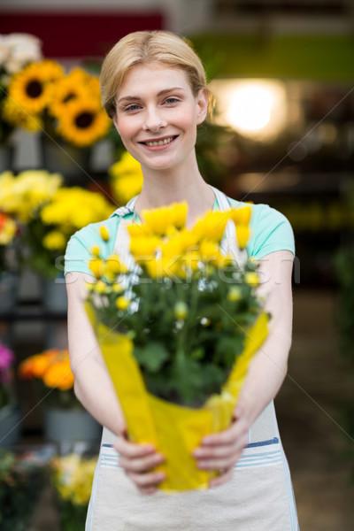 Foto stock: Femenino · florista · tienda · negocios